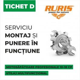 Tichet montaj si punere in functiune Ruris - categoria D